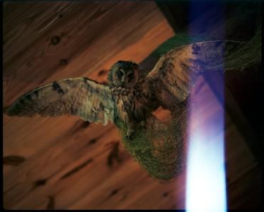 Tarkovsky's Ghost